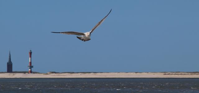 Urlaub an der Nordsee ist auf den ostfriesischen Inseln am Schönsten
