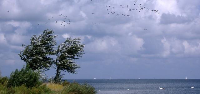 Urlaub am Ijsselmeer