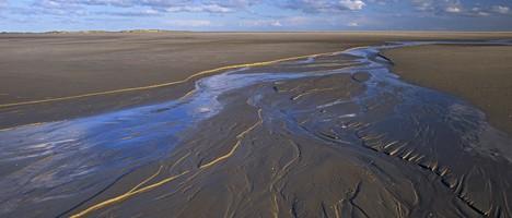 Priel im Nationalpark Wattenmeer